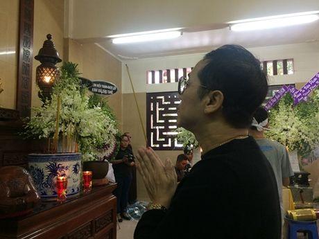 Dong dao nghe si nghen ngao dua 'ma' Ut Bach Lan ve chua An Quang - Anh 8