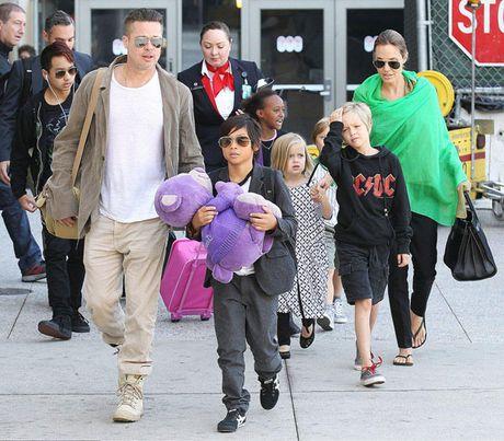 Brad Pitt nop don ly hon, de nghi duoc nuoi con - Anh 1