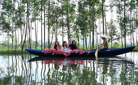 Lang man suoi Yen mua hoa sung - Anh 3