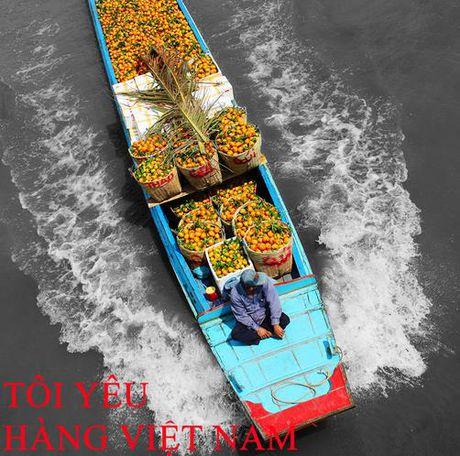 Moi nguoi Viet la mot dai su hang Viet - Anh 1
