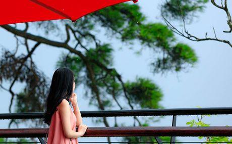 'Quan ca phe tren may' ban nhat dinh phai ghe mot lan o Tam Dao - Anh 5