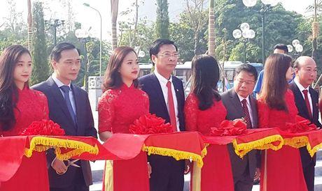 Quang Ninh: Khanh thanh tuong dai cu Vu Van Hieu - Anh 1