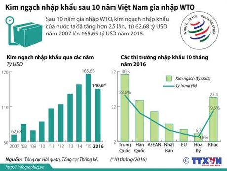 Kim ngach nhap khau cua Viet Nam 10 nam sau khi gia nhap WTO - Anh 1