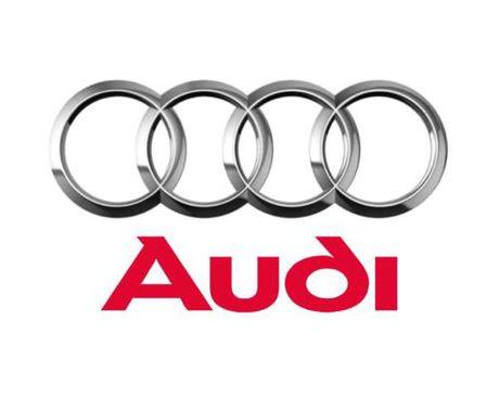 Audi bi phat hien lap dat thiet bi gian lan luong khi thai - Anh 1