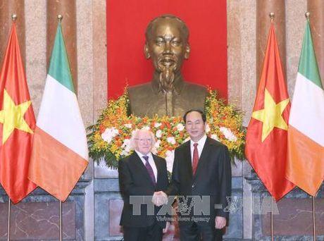 Chu tich nuoc Tran Dai Quang tiep don Tong thong Ireland tham cap Nha nuoc toi Viet Nam - Anh 2
