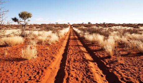 Namibia, tieng goi noi hoang da - Anh 4