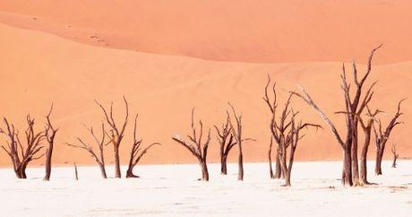 Namibia, tieng goi noi hoang da - Anh 5