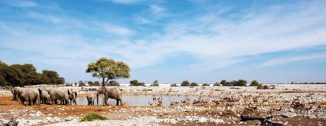 Namibia, tieng goi noi hoang da - Anh 8