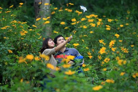 Len nui Ba Vi thuong hoa da quy - Anh 7