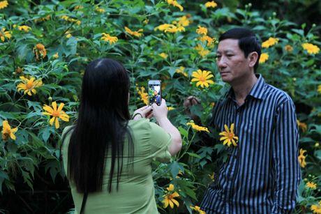 Len nui Ba Vi thuong hoa da quy - Anh 8