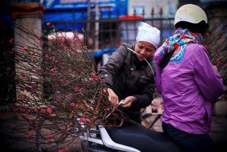 Doanh nghiep muon nghi Tet Nguyen dan Dinh Dau 7 ngay - Anh 1