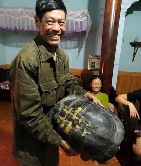 """Phat hien """"cu"""" rua khong lo trong ao rau muong - Anh 1"""