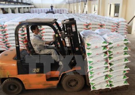 PVFCCo se cung ung 250.000 tan phan bon cho vu Dong Xuan - Anh 1