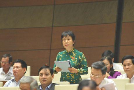 Dai bieu Quoc hoi de nghi danh thue thuong nhan nuoc ngoai thu mua nong san kieu 'la thuong' - Anh 1