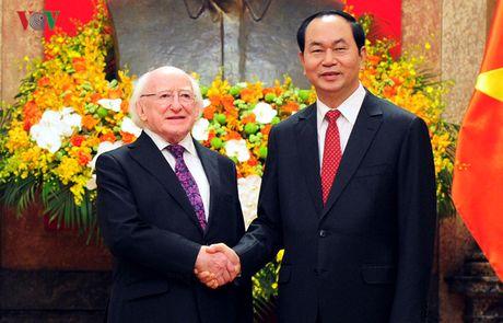 Chu tich nuoc Tran Dai Quang chieu dai trong the Tong thong Ireland - Anh 1