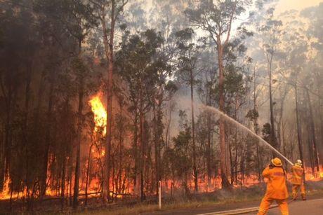 Australia: Hon 40 dam chay rung xay ra tai bang New South Wales - Anh 1