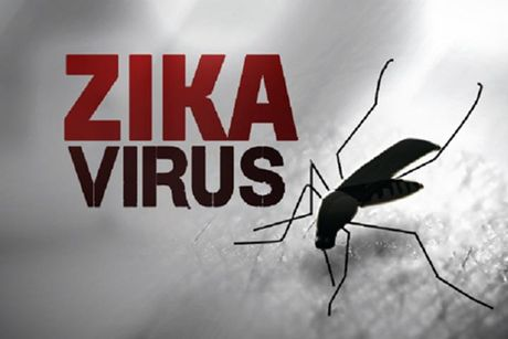 Mien Bac tro ret, virus Zika co ton tai? - Anh 1