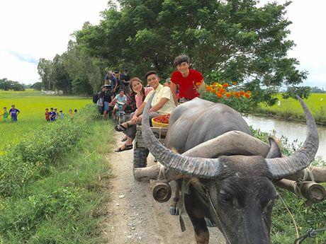 Sao Viet 8/11: Elly Tran ngoi xom an com hop, Sa Lim di choi voi 'tinh cu Midu' - Anh 10