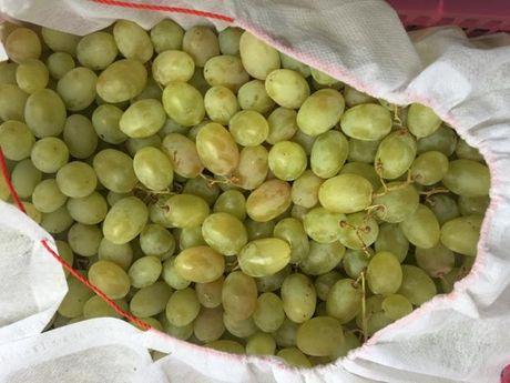 Quang Ninh: Lien tiep phat hien hoa qua khong dam bao tai cho Ha Long 1 - Anh 1