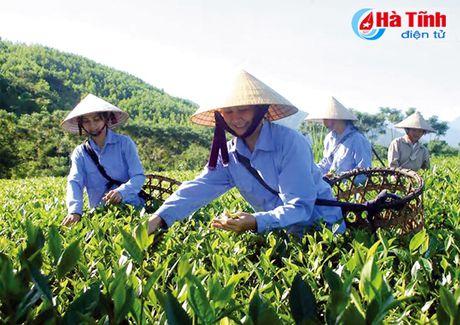 Phu nu Ha Tinh doan ket, sang tao, doi moi toan dien - Anh 2
