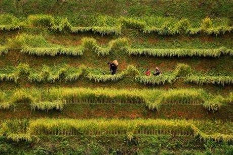 Nhung dong song Viet Nam- Chao mung ngay Di san Van hoa Viet Nam - Anh 4