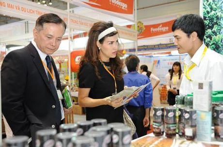 Thu chao mung DN tham gia Vietnam Foodexpo 2016 cua Pho Thu tuong Trinh Dinh Dung - Anh 3