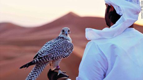 Nhung diem nhat dinh phai ghe khi den 'hang xom' cua Dubai - Anh 10