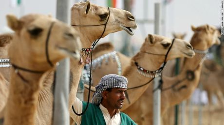 Nhung diem nhat dinh phai ghe khi den 'hang xom' cua Dubai - Anh 15