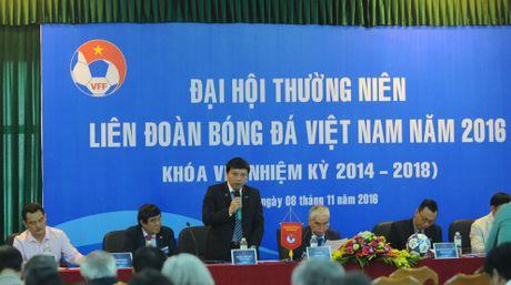 Bau Duc vang mat o Dai hoi thuong nien VFF - Anh 1