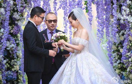 Luu Diec Phi la phu dau cho diva khong moi me du dam cuoi - Anh 6