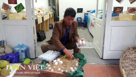 Vit bien Doan Van Vuon tron 1 nam chinh phuc thi truong - Anh 1