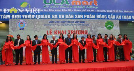 Them mot chuoi sieu thi thuc pham nong san an toan Viet Nam - Anh 2