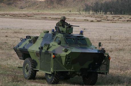 Linh du Nga bat ngo duoc lam quen voi vu khi NATO - Anh 10
