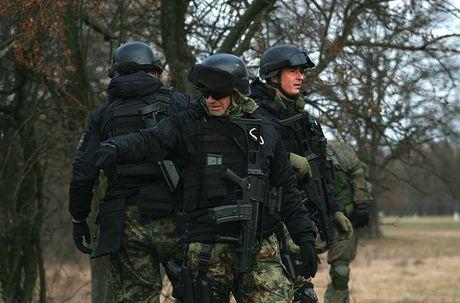 Linh du Nga bat ngo duoc lam quen voi vu khi NATO - Anh 6