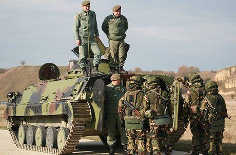 Linh du Nga bat ngo duoc lam quen voi vu khi NATO - Anh 9
