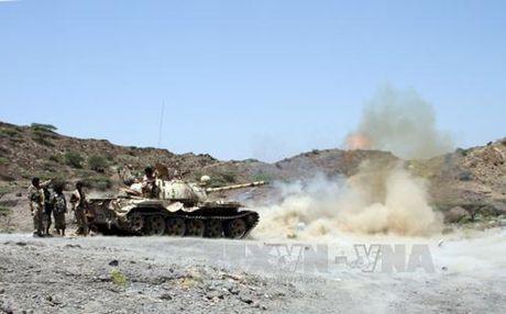 Quan doi Yemen tieu diet 6 tay sung nghi thuoc Al-Qaeda - Anh 1