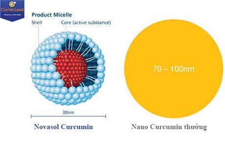 NanoCurcumin nao tot? - Anh 2