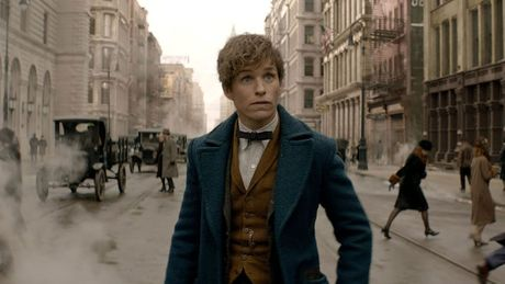 Giao su Dumbledore tai xuat trong phan hai 'Fantastic Beasts And Where To Find Them' - Anh 2