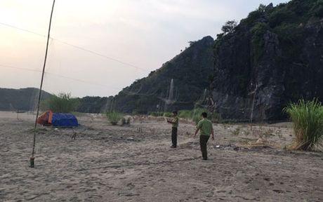 Hai Phong: Kho bao ve chim di cu bi san bat trai phep - Anh 1