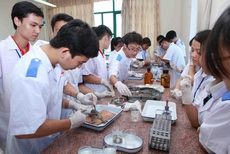 'Sinh vien co the hoan thanh chuong trinh dai hoc trong 3 nam' - Anh 1
