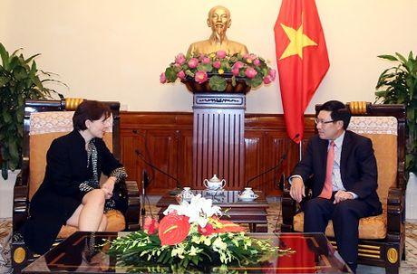 Pho Thu tuong Pham Binh Minh tiep Dai su Italy - Anh 1