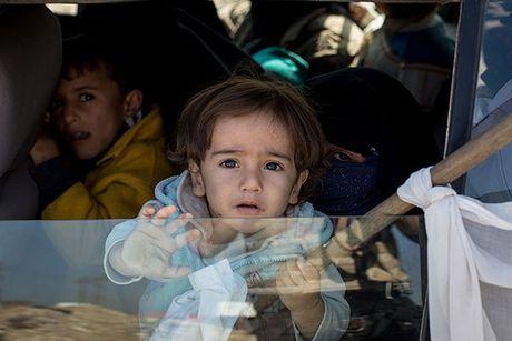 Chum anh nguoi dan Iraq chay loan khoi Mosul - Anh 11