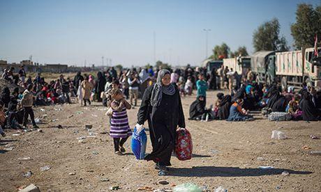 Chum anh nguoi dan Iraq chay loan khoi Mosul - Anh 5