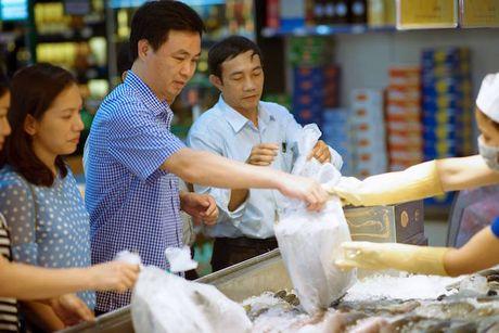 Quang Binh: Nhieu mau hai san luu giu tai kho dong lanh khong dat chuan Cadimi - Anh 1