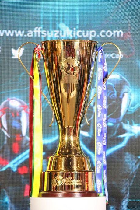 Cong Vinh hua se mang Cup vang AFF Suzuki 2016 ve cho Viet Nam - Anh 2