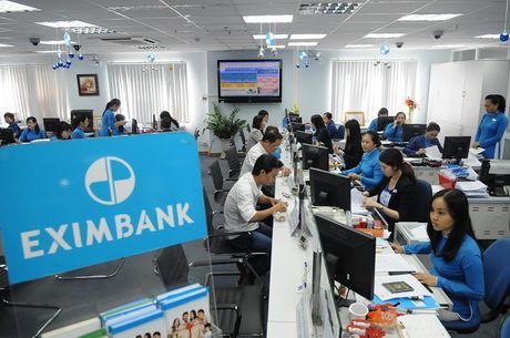 Chat luong tai san 'de doa' trien vong phuc hoi cua Eximbank - Anh 1