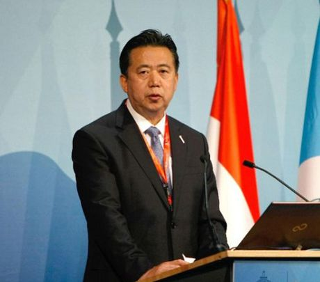 Thu truong Cong an Trung Quoc lam Chu tich Interpol - Anh 1