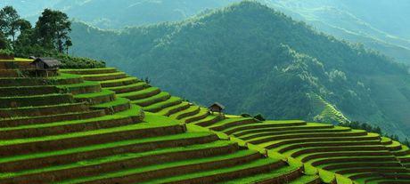 Hop tac, xuc tien du lich Viet Nam - Ha Lan - Anh 1