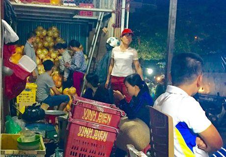 Buoi la co mau vang bong la buoi Trung Quoc - Anh 1