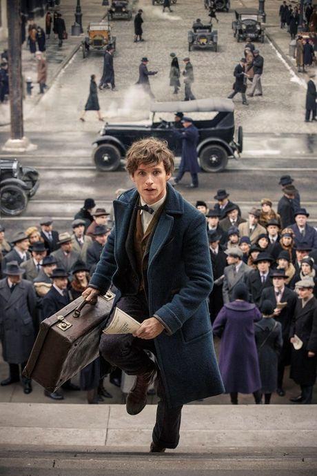 Fan Harry Potter phat sot vi clip hau truong 'Fantastic Beasts' nhieu bi an - Anh 1